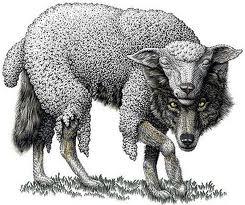 wolfschaf